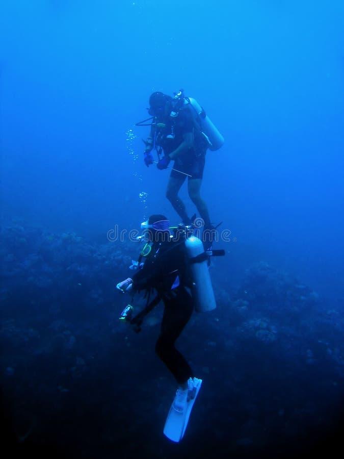潜水员菲律宾礁石sabang水肺墙壁 免版税库存图片