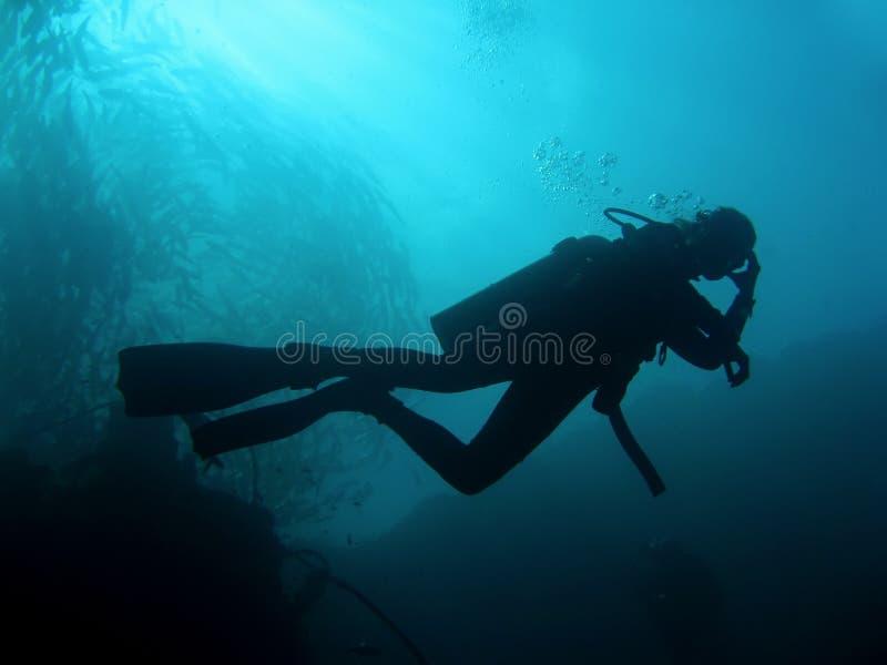 潜水员sipadan水肺的剪影 库存图片