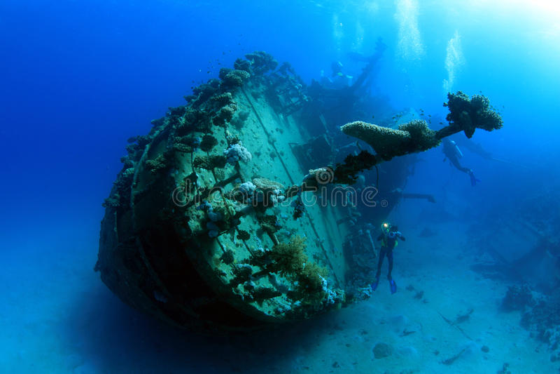 潜水在红海 库存图片