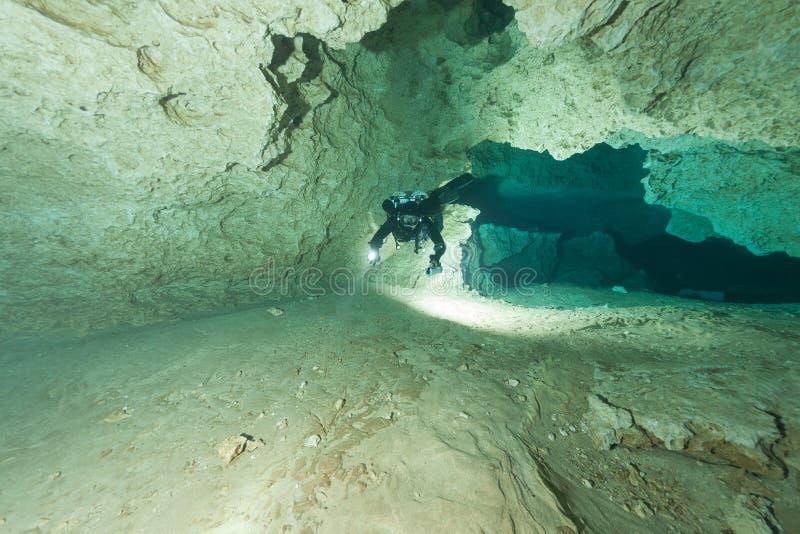 潜水者水下的洞潜水的佛罗里达杰克逊蓝色洞美国 库存照片