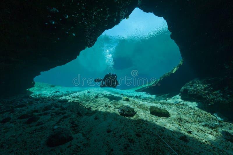 潜水者水下的洞潜水的佛罗里达杰克逊蓝色洞美国 库存图片