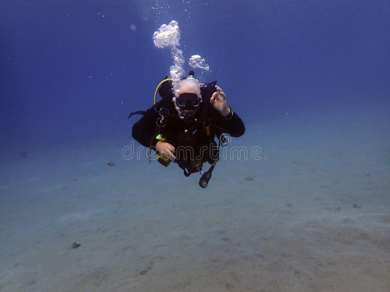 潜水者浸入新的站点喀斯特 库存图片