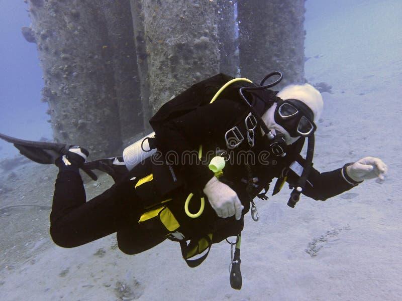 潜水者浸入新的站点喀斯特 免版税库存图片
