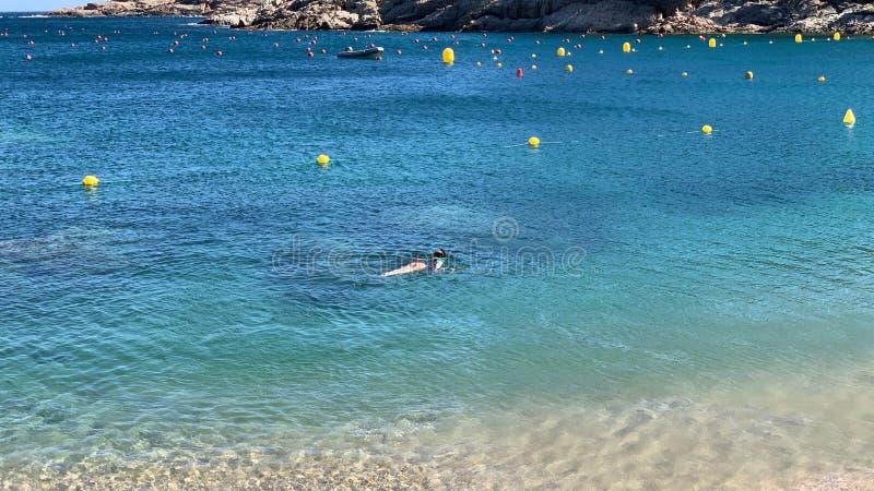 潜航在地中海的温暖的透明的水域中 库存照片