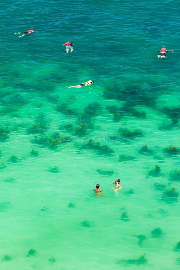 潜航在热带海的游人鸟瞰图在Mu酸值Ang皮带海岛附近 免版税库存照片