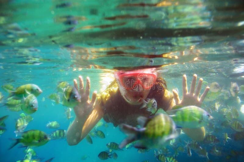 潜航在水面下在海的妇女 库存图片