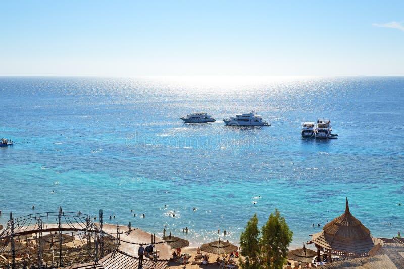 潜航的游人和马达游艇在红海 免版税库存照片
