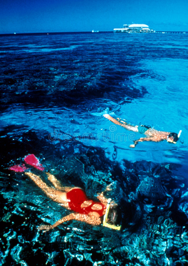 潜航的礁石 免版税库存照片