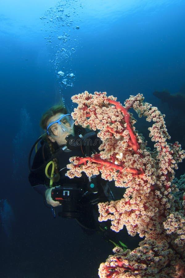 轻潜水员探索珊瑚礁 免版税库存照片