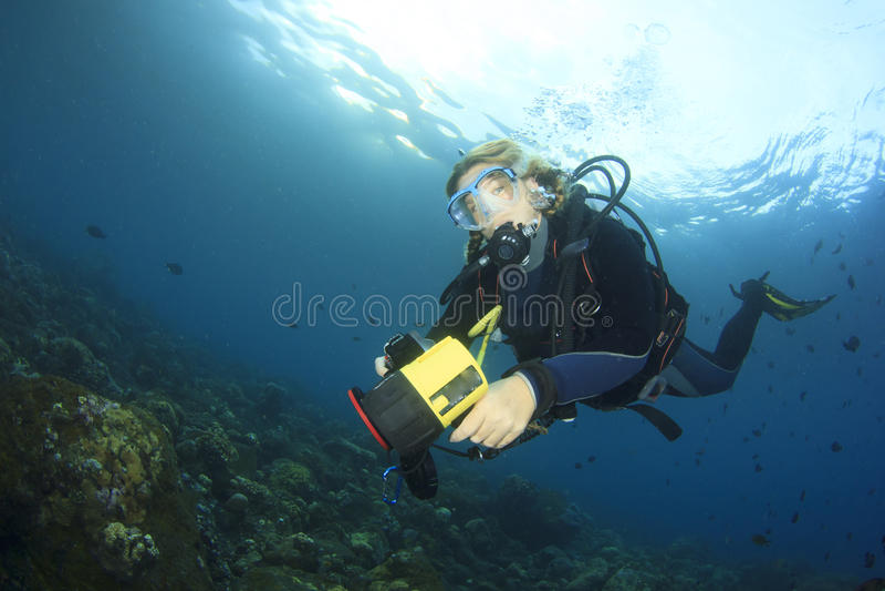 轻潜水员探索珊瑚礁 免版税图库摄影