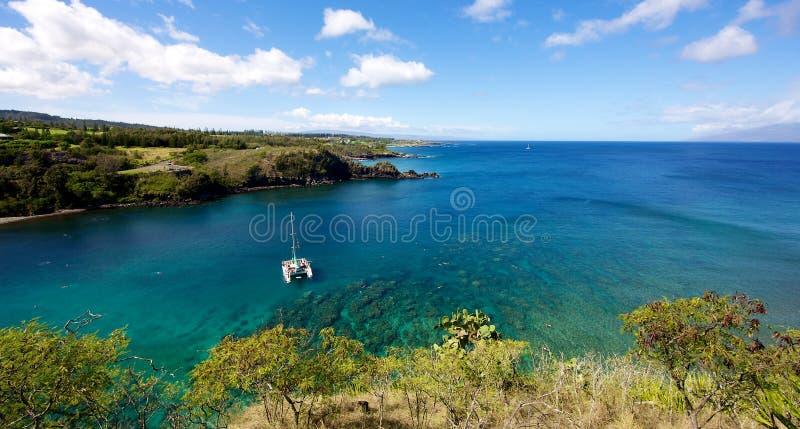 潜水在Honolua海湾 库存图片