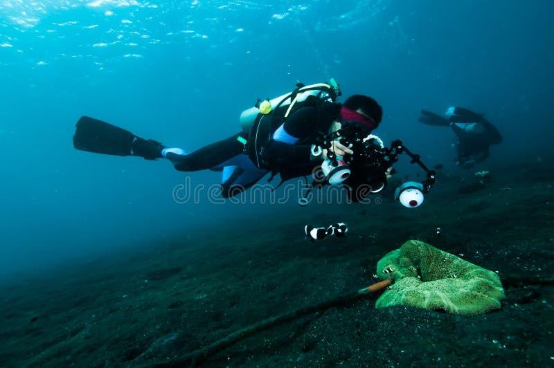 潜水者采取照片录影在珊瑚lembeh印度尼西亚佩戴水肺的潜水 库存照片