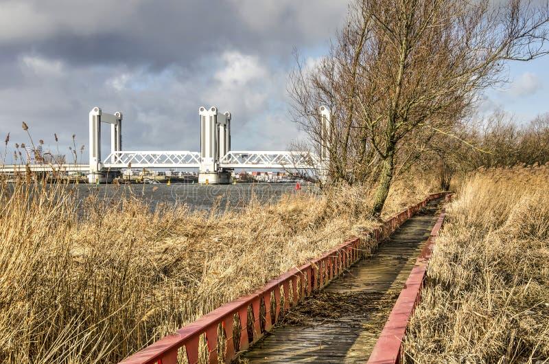 潮汐自然保护和桥梁 免版税图库摄影