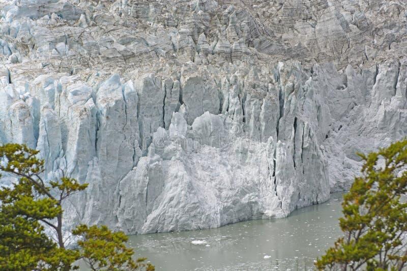 潮水冰川的冰前面 免版税库存照片