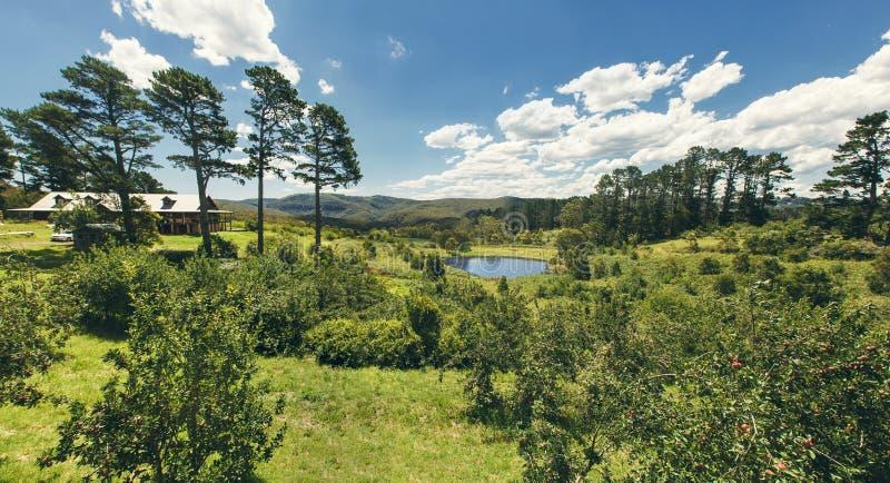 澳大利亚。自然风景。 免版税库存照片