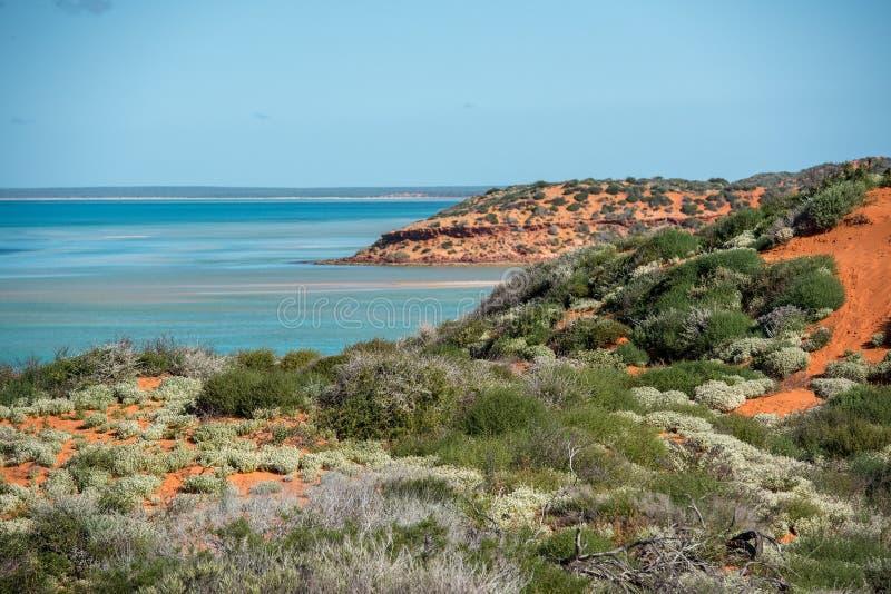 澳大利亚北方领土风景弗朗索瓦peron公园 库存图片