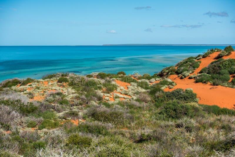 澳大利亚北方领土风景弗朗索瓦peron公园 免版税库存图片