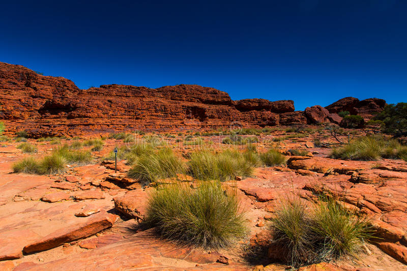 澳大利亚在内地风景视图 免版税库存图片