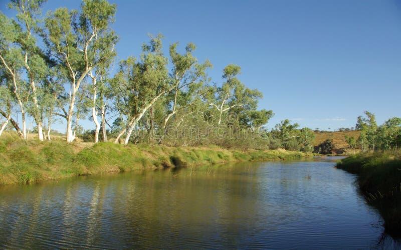 澳大利亚河视图 免版税库存照片