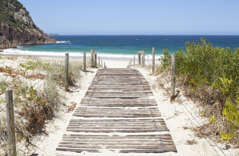 澳大利亚海滩木板走道 库存图片