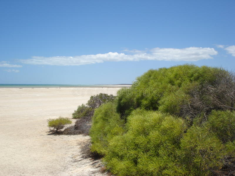 澳大利亚海滩 图库摄影