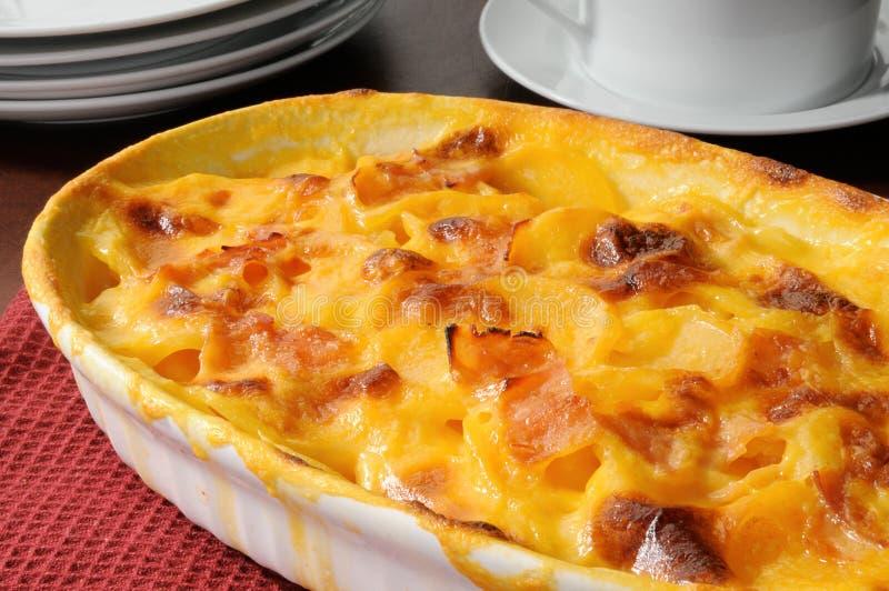 澳大利亚焦干酪土豆 免版税库存图片