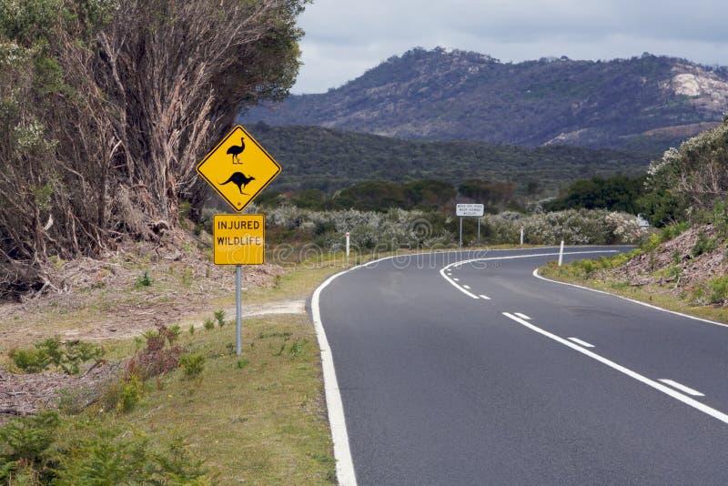 澳大利亚路标行程野生生物 免版税库存图片