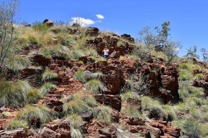 澳大利亚,北方领土,麦道排列 免版税库存图片