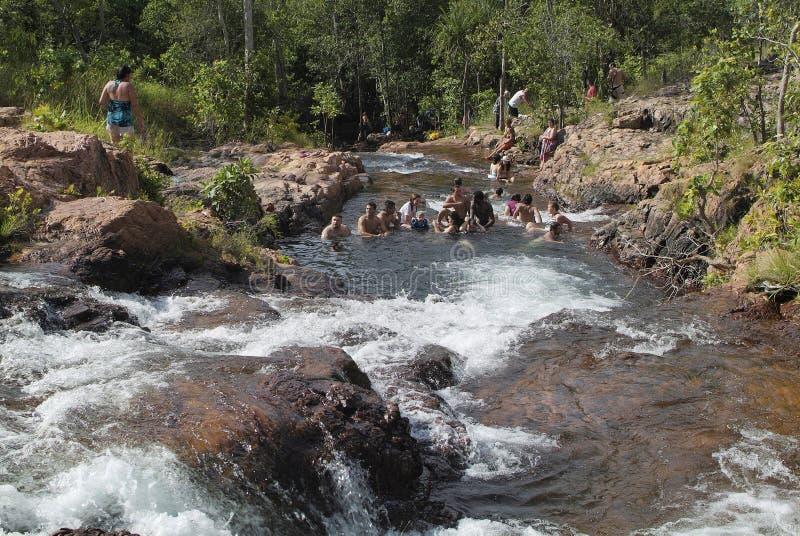 澳大利亚,北方领土, Litchfiel国家公园 库存图片
