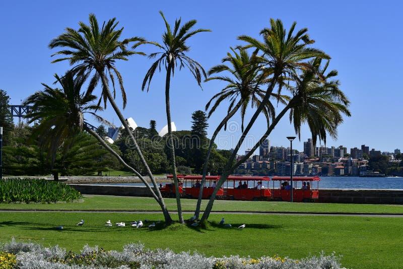 澳大利亚,NSW,悉尼,旅游火车在植物园里 库存照片