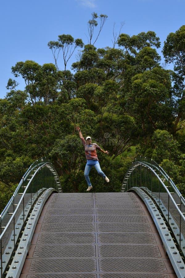 澳大利亚,WA,珀斯,Park国王 库存照片