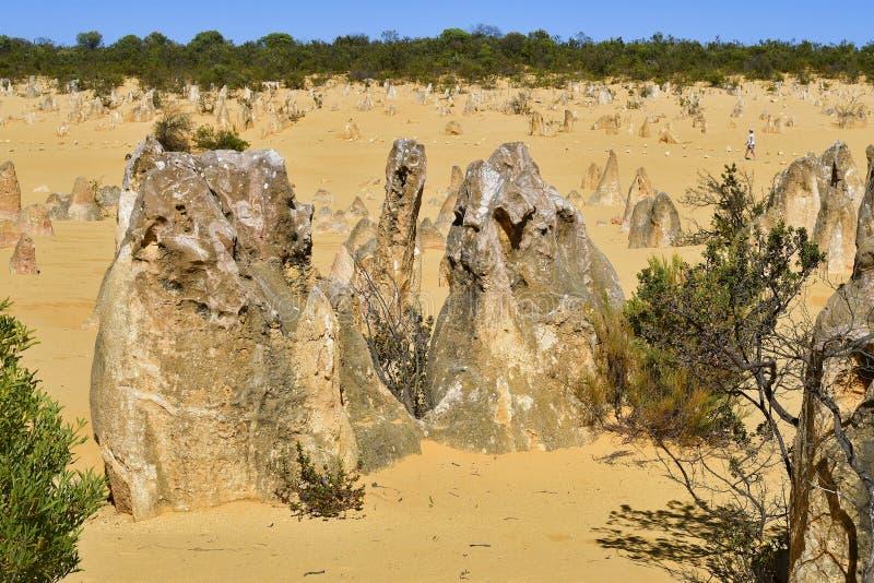 澳大利亚,WA,石峰岩层 免版税库存图片