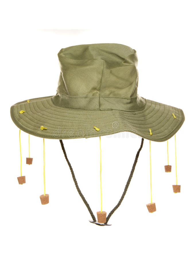 澳大利亚黄柏帽子 免版税库存图片