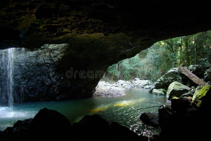 澳洲桥梁南东部自然的昆士兰 图库摄影