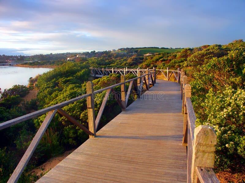 澳洲海岸线木板走道 免版税库存图片