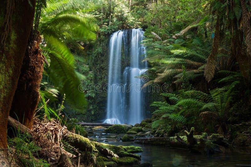 澳洲瀑布 免版税库存图片