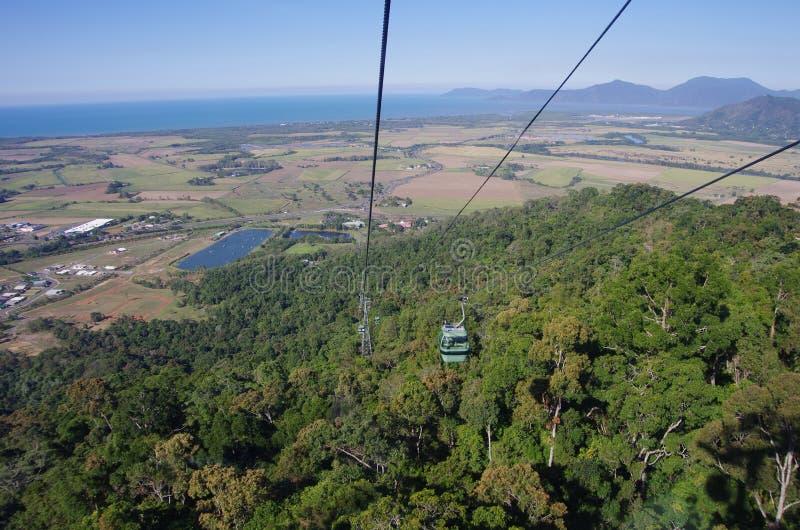 澳洲空中览绳雨林skyrail 免版税库存照片