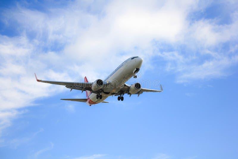 澳洲航空,飞行袋鼠 免版税库存图片