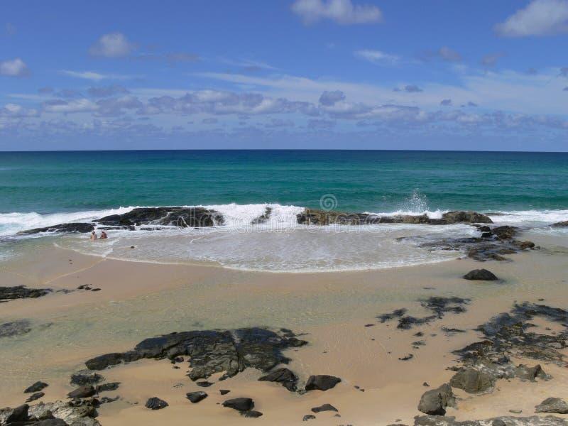 澳洲香槟fraser海岛池 免版税库存图片