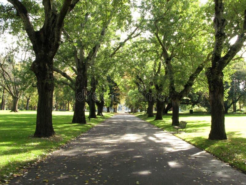 澳洲carlton庭院墨尔本走道 免版税库存图片