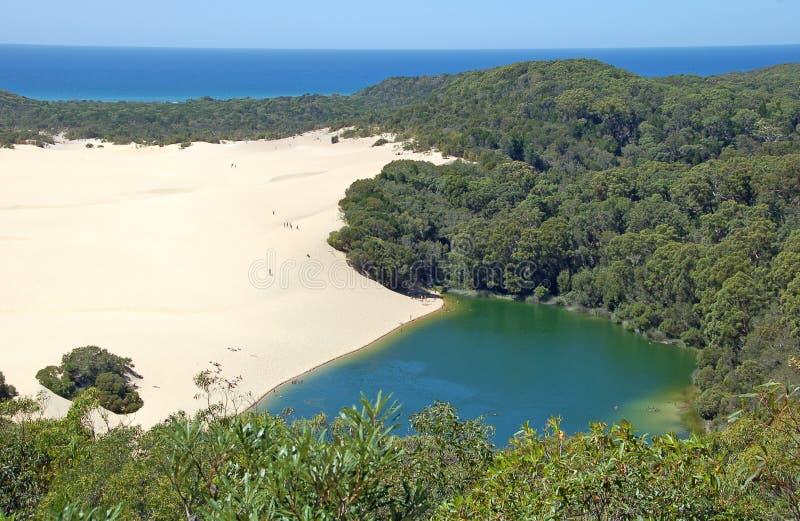 澳洲fraser wabby海岛的湖 免版税图库摄影
