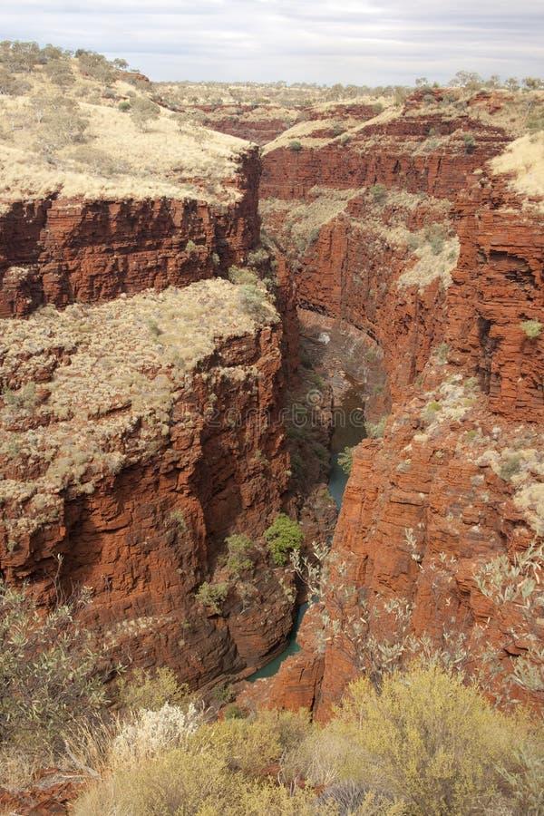 澳洲karijini公园pilbara 免版税库存图片