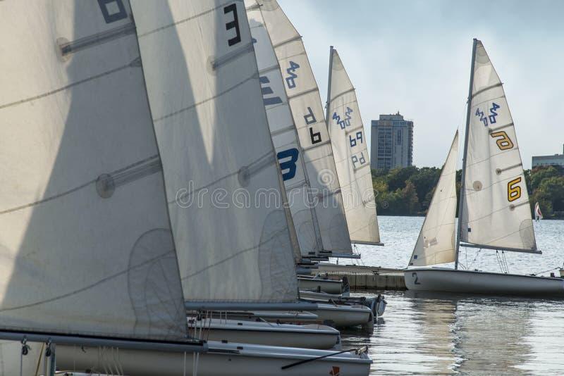 激光帆船在湖Minnetonka在米尼亚波尼斯,美国 免版税图库摄影