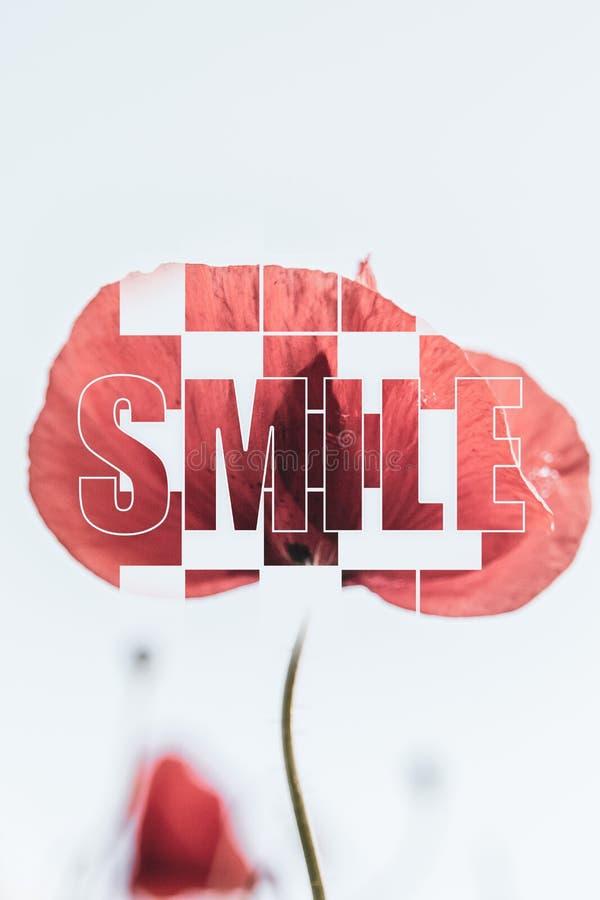 激动人心的海报微笑红色鸦片蓝色背景 免版税库存图片