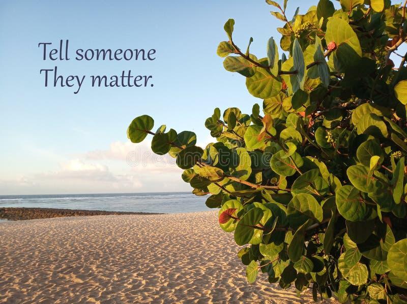 激动人心的诱导行情告诉他们事关的人 在干净的天空蔚蓝风景和绿色植物下的白色沙滩 图库摄影