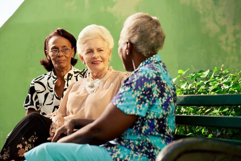 小组年长黑人和白种人妇女谈话在公园 库存图片
