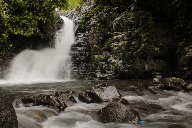 瀑布全景在热带森林里 库存照片