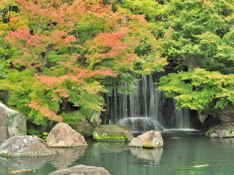 瀑布和红色在秋天季节离开在Koko en庭院,姬路,日本 免版税库存图片