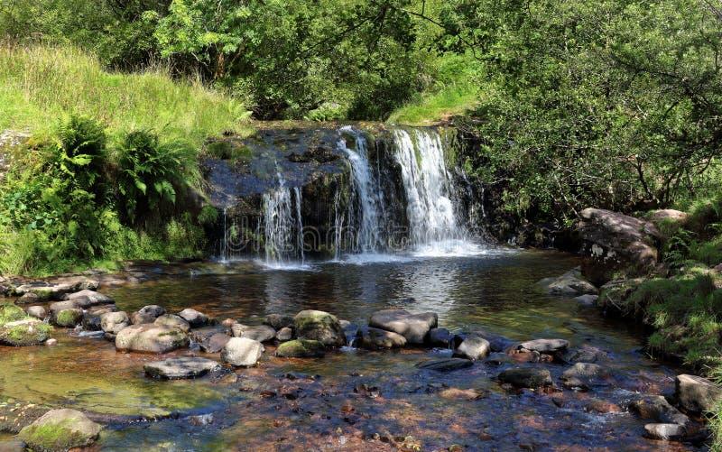 瀑布和水池在河Caerfanell在布雷肯比肯斯山 免版税库存照片