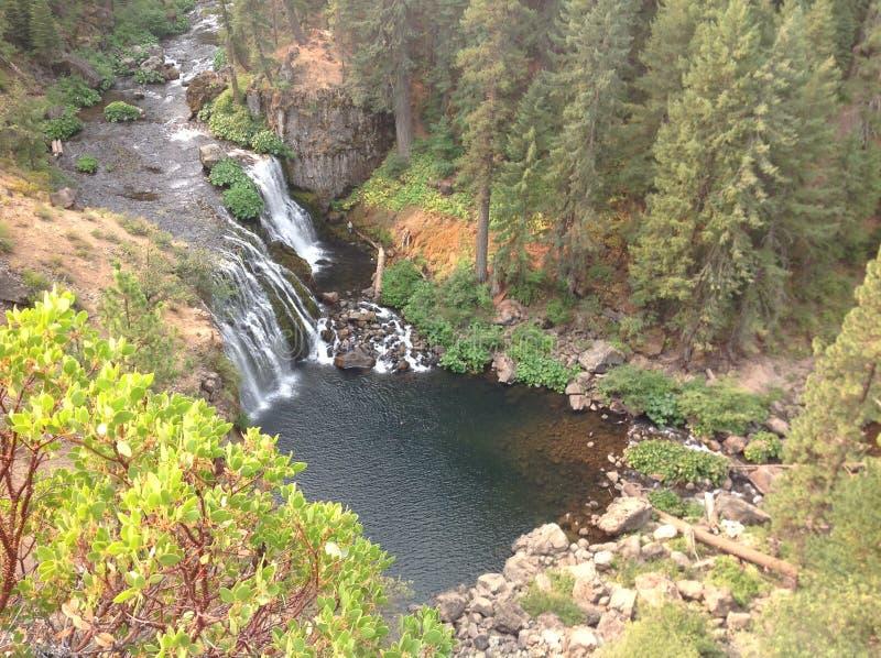 瀑布在俄勒冈 免版税库存图片
